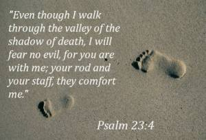 even-though-i-walk-through-the-valley-of-the-shadow-of-death-i-will-fear-no-evil-bible-quote