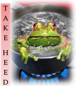 Take Heed frog in boiling pot